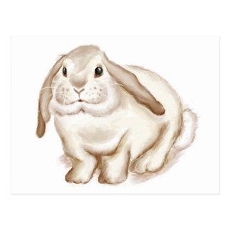 Brown Bunny Watercolor Postcards
