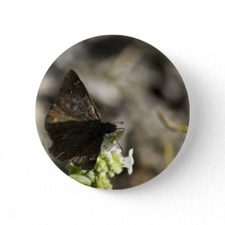 Brown Butterfly Button