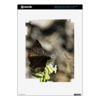 Brown Butterfly Ipad 3 Skins