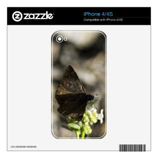 Brown Butterfly Iphone 4 Decal