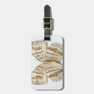 Brown Butterfly, overhead view Bag Tag