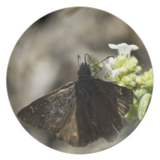 Brown Butterfly Party Plate