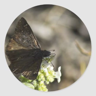 Brown Butterfly Round Stickers