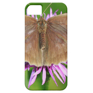 Brown Butterfy en la flor Funda Para iPhone 5 Barely There