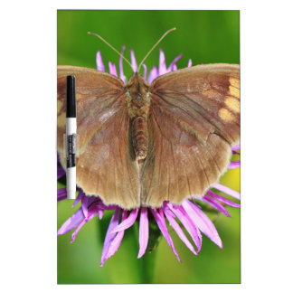 Brown Butterfy on Flower Dry Erase Board