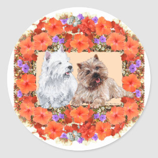 Brown Cairn and Westie Terriers in Floral Classic Round Sticker
