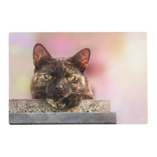 Brown Cat 2 Placemat