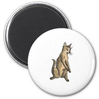 Brown Cat Sitting Magnet