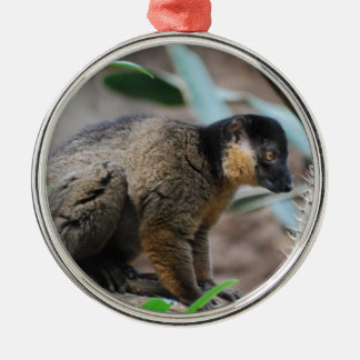 Brown Collared Lemur Christmas Tree Ornament
