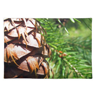 Brown Cone Cloth Placemat