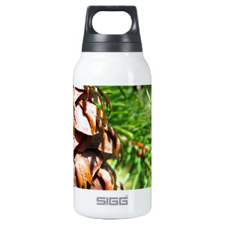 Brown Cone Insulated Water Bottle