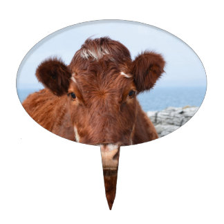 Brown Cow Cake Topper