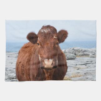 Brown Cow Kitchen Towel