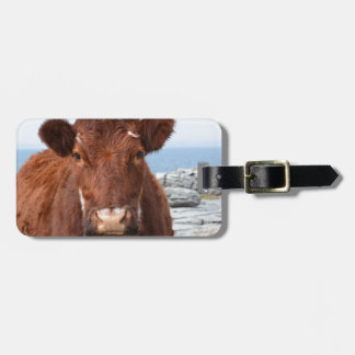 Brown Cow Luggage Tag