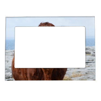 Brown Cow Magnetic Frame