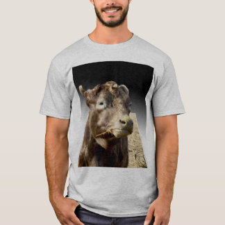 Brown Cow Munching On Hay, T-Shirt