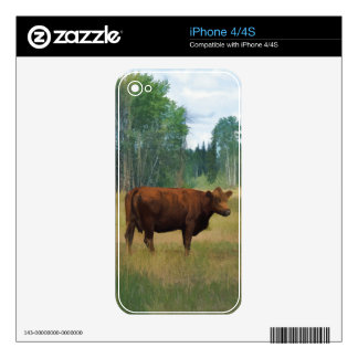 Brown Cow on a Horse and Cattle Ranch iPhone 4S Skin