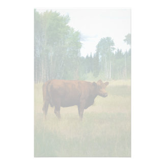 Brown Cow on a Horse and Cattle Ranch Stationery
