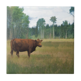 Brown Cow on a Horse and Cattle Ranch Tile