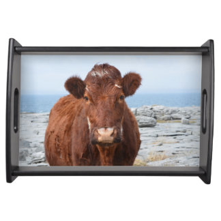 Brown Cow Service Tray