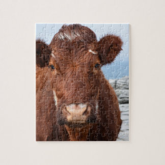 Brown Cow Jigsaw Puzzle