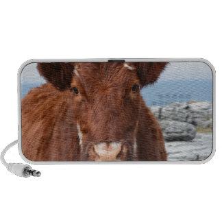 Brown Cow Portable Speakers