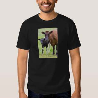 Brown cow together with black and white calf t-shirt