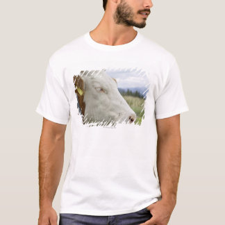 Brown cow with a sign in it?s ear on a feedlot, T-Shirt