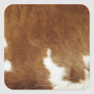 Brown Cowhide Print Square Sticker
