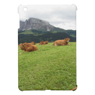 Brown cows on alpine pastures in summer iPad mini cases