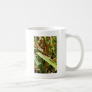 Brown Cricket Coffee Mug