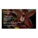 Brown Cymbidium flowers Business Card Templates