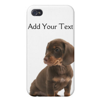 Brown Dachshund Puppy  Cover For iPhone 4