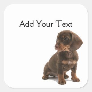 Brown Dachshund Puppy Sticker