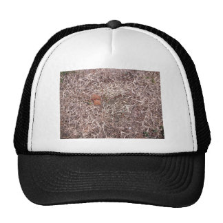 Brown dead grass, weeds, and leaves mesh hat