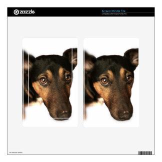 Brown Dog Amazon Kindle Skin