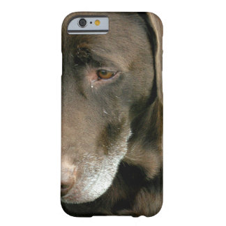 Brown Dog Barely There iPhone 6 Case