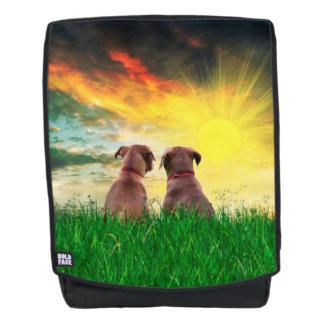 Brown dog best friends backpack