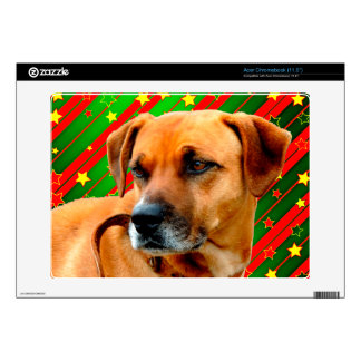 Brown Dog stars Red Yellow Green Christmas Decal For Acer Chromebook