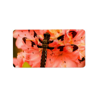 Brown Dragonfly on Flower Label
