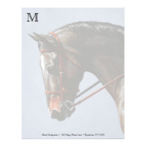 Brown Dressage Horse Portrait Letterhead