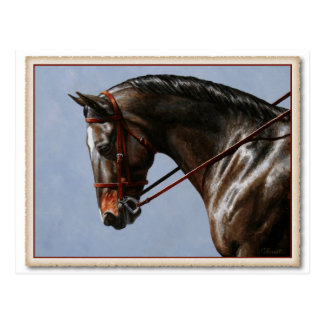 Brown Dressage Horse Post Cards