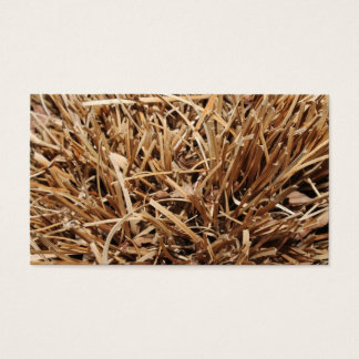 Brown Dried Out Plant Business Card