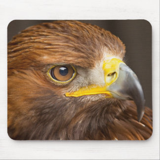 Brown Eagle Profile Mouse Pad