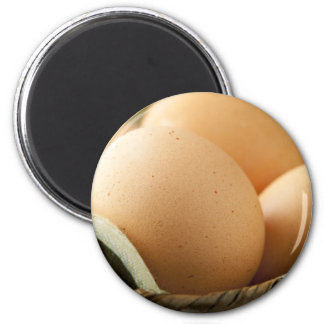 Brown Eggs Magnet