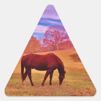 > Brown en un campo coloreado soñador Pegatina Triangular