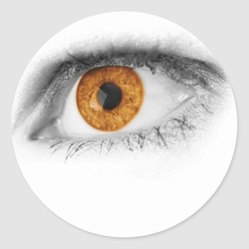 Brown Eye Art Round Stickers