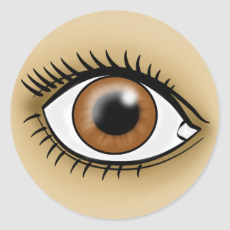 Brown Eye icon Classic Round Sticker