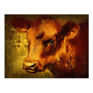 Brown Eyed Girl - Cow Oil Painting Postcard