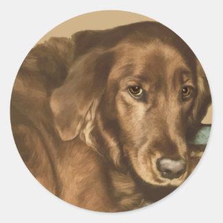 Brown Eyed Golden Irish Dog Classic Round Sticker